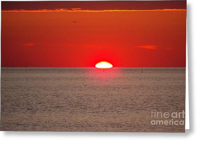 Lobster Pots Dance In The Sea  At Sunrise Greeting Card by Eunice Miller