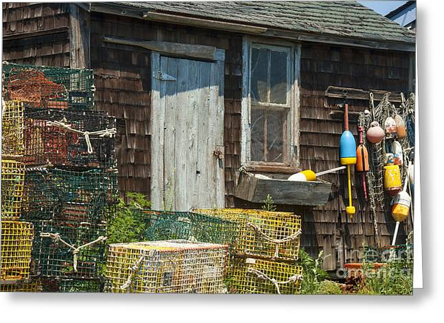 Lobster Shack Greeting Card by Juli Scalzi