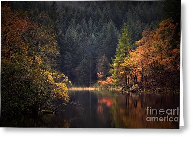 Loch Ard In The Fall Greeting Card by John Farnan