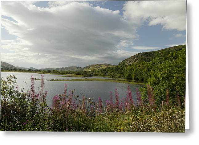 Greeting Card featuring the photograph Loch Fleet Scotland by Sally Ross