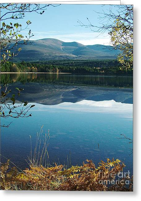 Greeting Card featuring the photograph Loch Morlich - Autumn by Phil Banks