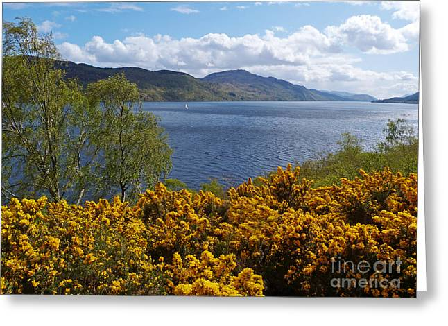 Loch Ness - Springtime Greeting Card