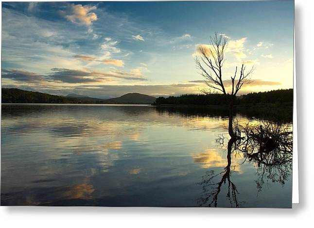 Greeting Card featuring the photograph Loch Rannoch Relflections by Stephen Taylor