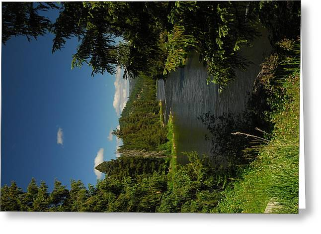Lochsa River Overlook Greeting Card by Larry Moloney