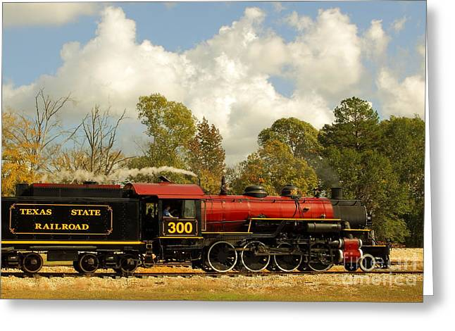 Locomotion Greeting Card by Robert Frederick