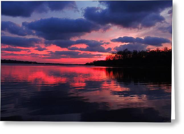 Locust Sunset Greeting Card by Raymond Salani III