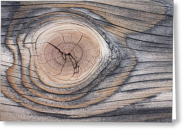 Lodgepole Pine Wood Patterns Greeting Card by Peter Cairns