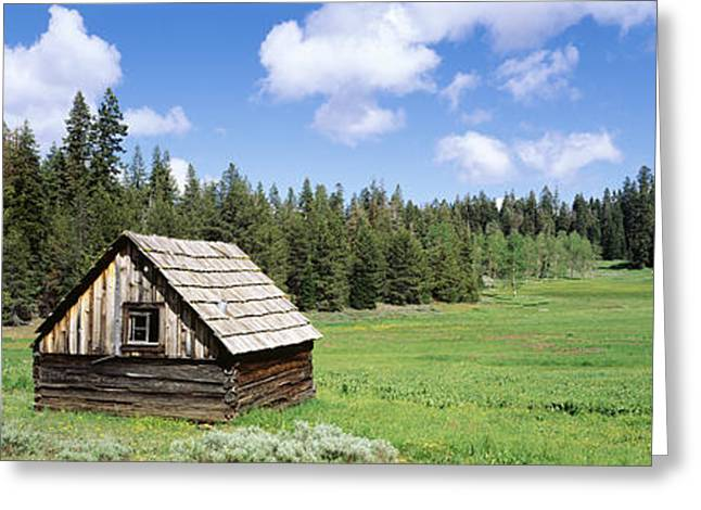 Log Cabin In A Field, Klamath National Greeting Card by Panoramic Images