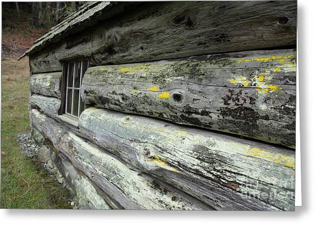 Log Cabin Side Greeting Card by Graham Foulkes