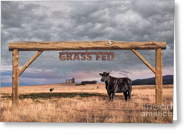 Log Entrance To Grass Fed Angus Beef Ranch Greeting Card
