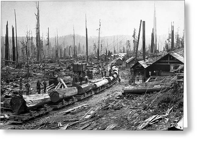 Log Tram And Logging Camp C. 1890 Greeting Card