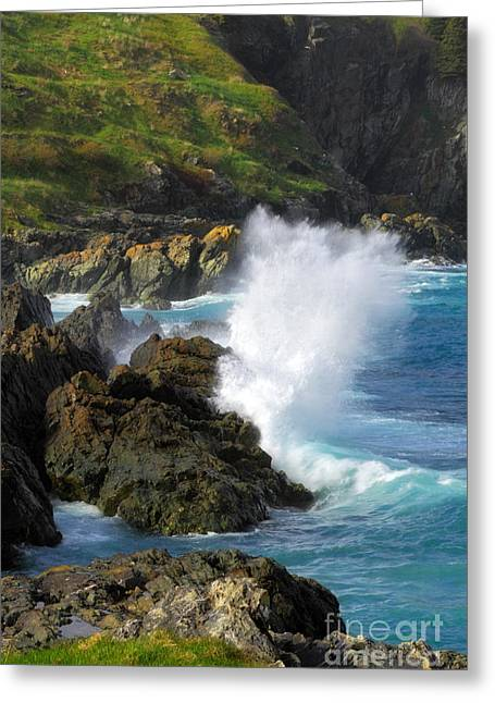 Logy Bay In Newfoundland Greeting Card by Charline Xia