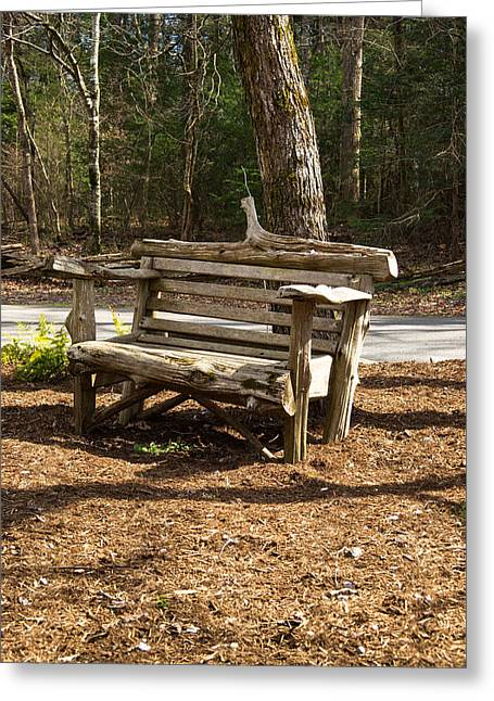 Lone Bench Waiting Greeting Card