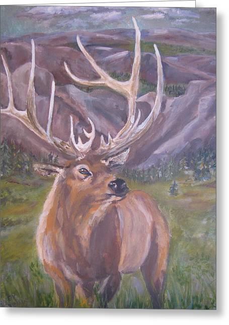 Lone Elk Greeting Card by Caroline Owen-Doar
