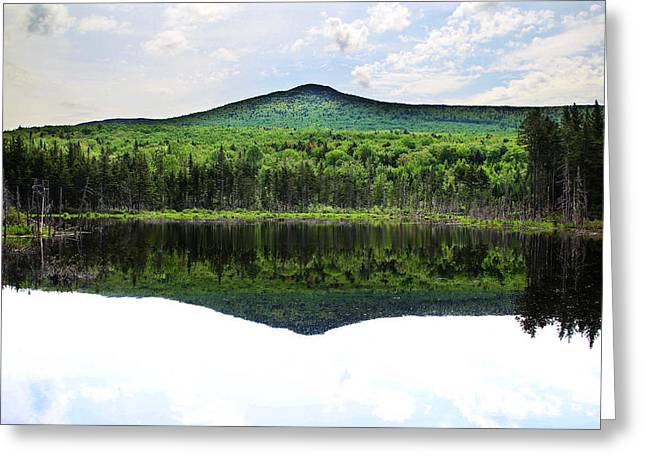 Lone Lake Greeting Card by Andrea Galiffi