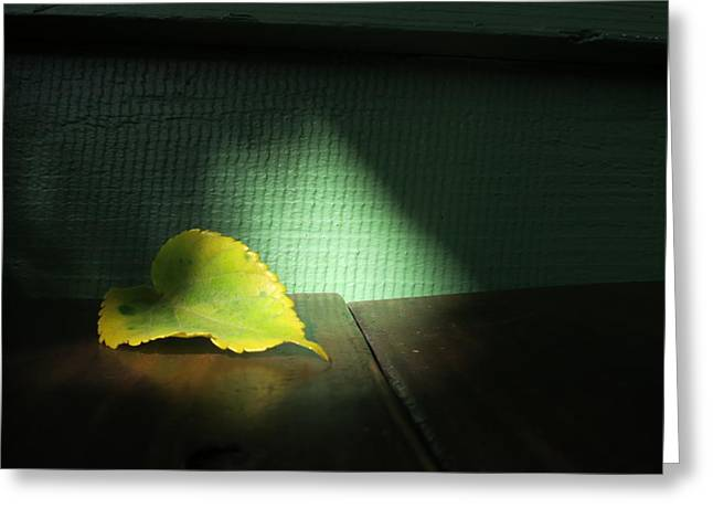 Greeting Card featuring the photograph Lone Leaf by Paul Foutz