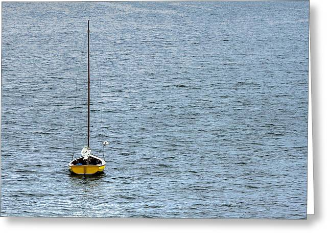 Yellow Sailboats Photographs Greeting Cards - Lone Sailboat Greeting Card by Heidi Piccerelli