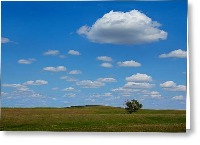 Lone Tree Bluff Greeting Card