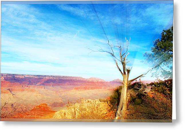 Lone Tree Canyon Greeting Card
