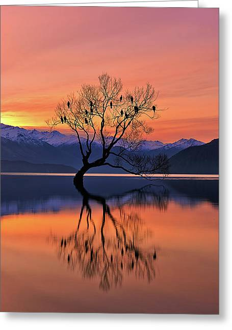 Lone Tree Is Not Lonely Greeting Card by Mei Xu