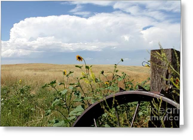 Lone Wheel Greeting Card by Josh Alecci