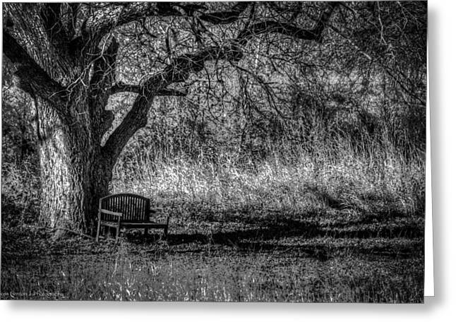 Lonely Bench Greeting Card by Ross Henton