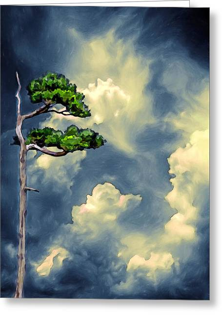 Lonely Bonsai Greeting Card