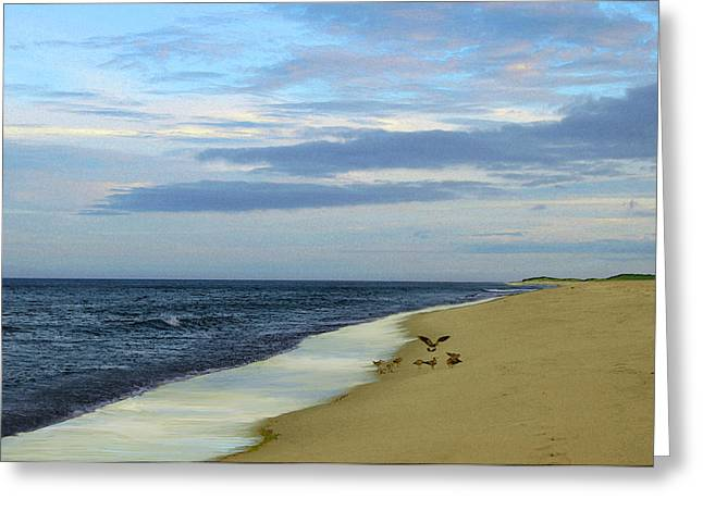 Lonely Cape Cod Beach Greeting Card