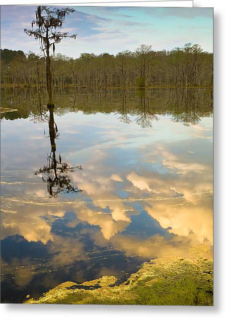 Lonely Reflection Greeting Card by Denis Lemay