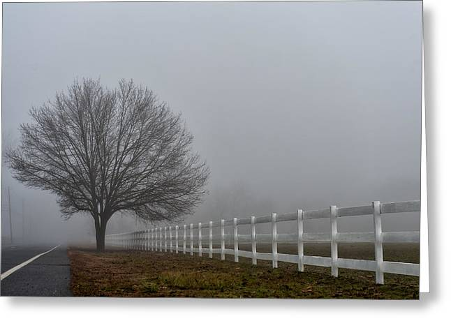 Lonely Tree Greeting Card by Louis Dallara