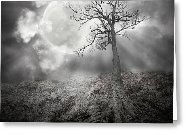 Lonely Tree With Roots Holding The Moon Greeting Card by Angela Waye