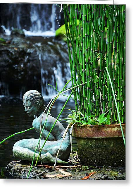 Greeting Card featuring the photograph Lonely Water Pixie by Amanda Vouglas