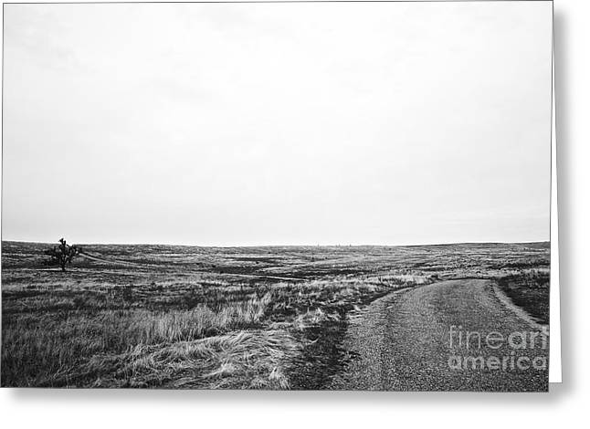 Lonesome Highway No.1 Greeting Card
