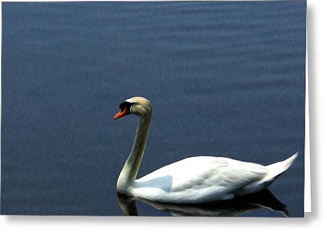 Lonesome Swan Greeting Card