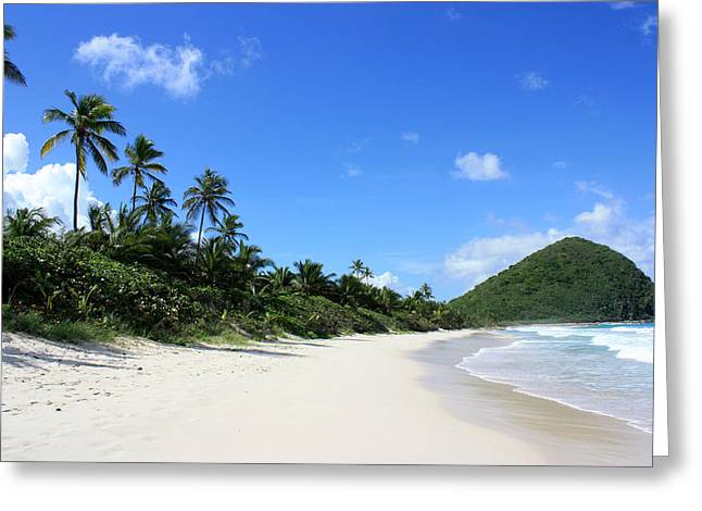 Long Bay Tortola Greeting Card by Laura Hiesinger