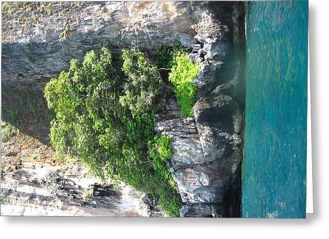 Long Boat Tour - Phi Phi Island - 0113154 Greeting Card