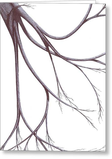 Long Branches Greeting Card