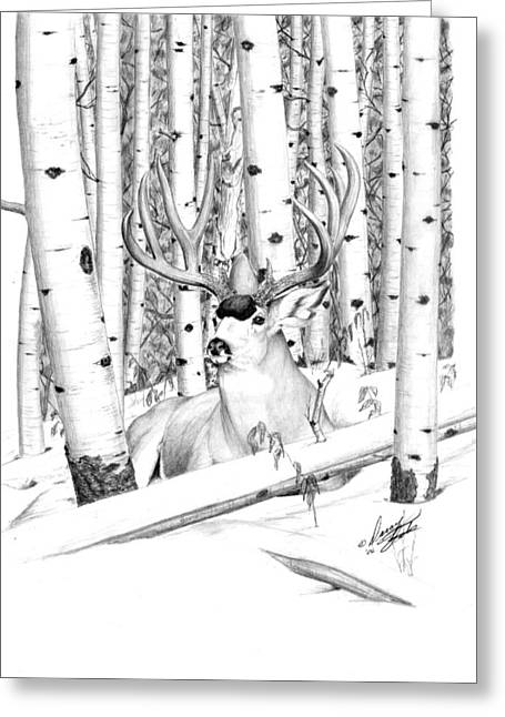 Long Buck Greeting Card