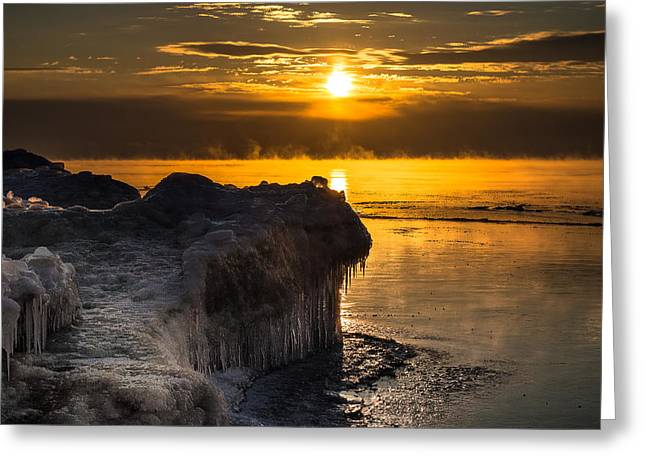 Long Cold Winter Greeting Card by James  Meyer