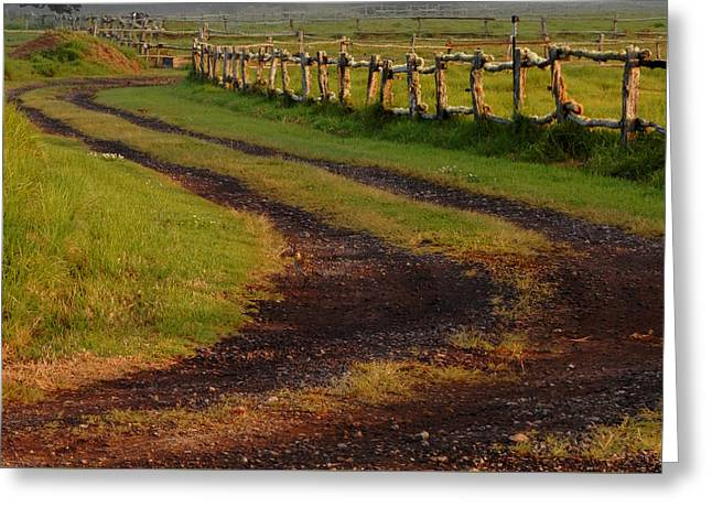 Long Dirt Road Greeting Card