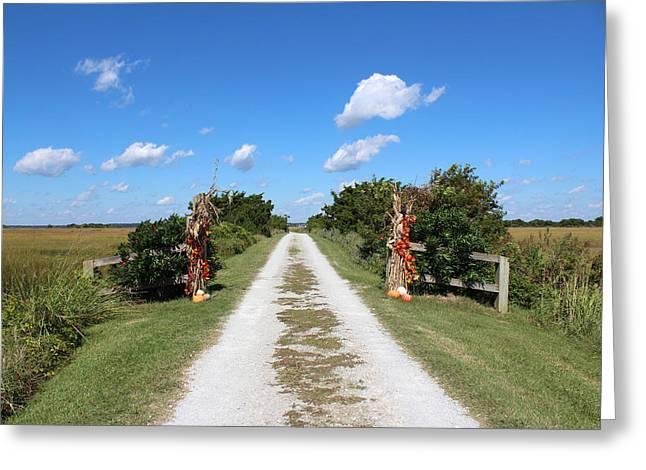Long Road Home Greeting Card by Cynthia Guinn