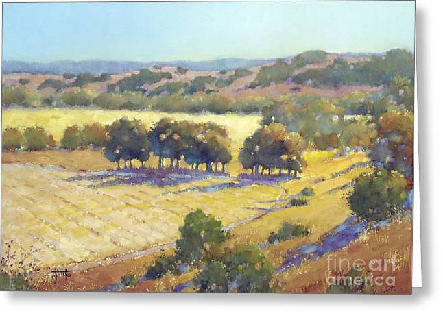 Country Road. Rural Greeting Cards - Long Shadows at Los Olivos Greeting Card by Joyce Hicks