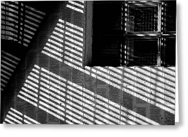 Long Shadows Greeting Card by Steven Milner