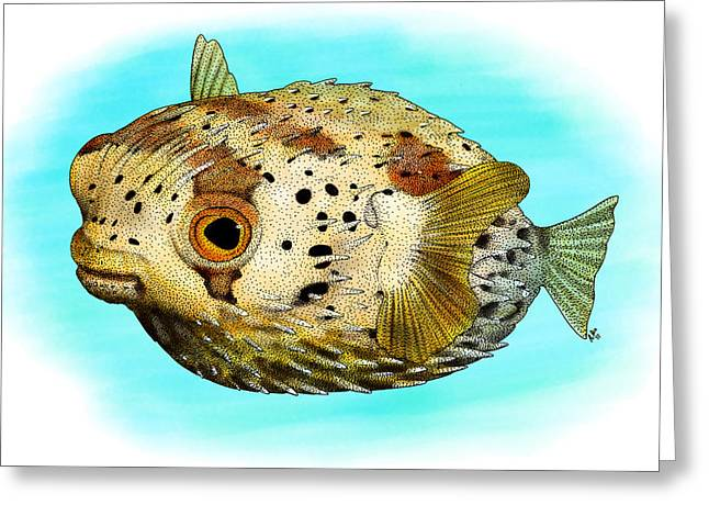 Long-spine Porcupine Fish Greeting Card