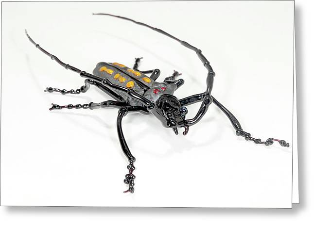 Longhorn Beetle Greeting Card by Tomasz Litwin