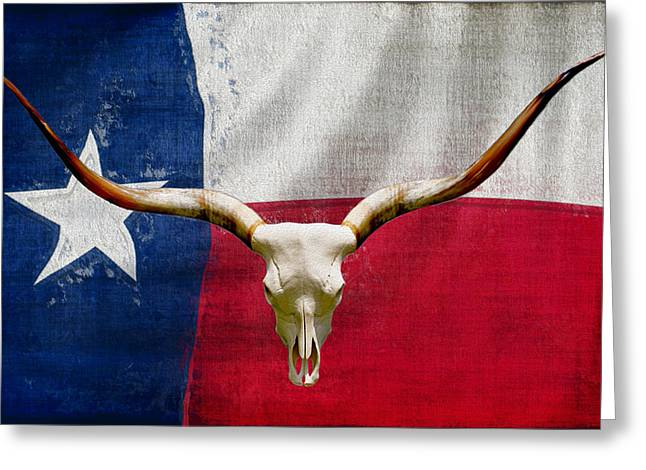 Longhorn Of Texas 2 Greeting Card by Jack Zulli