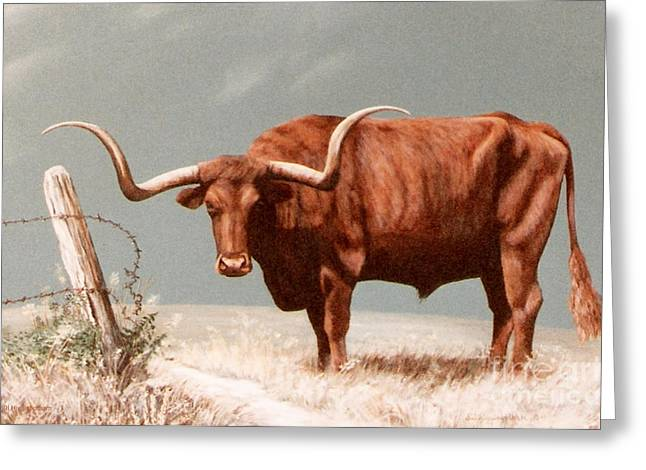 Greeting Card featuring the painting Longhorn Steer by DiDi Higginbotham