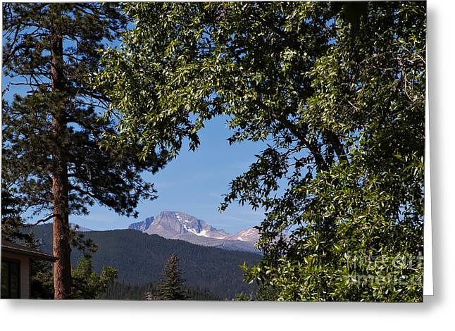 Longs Peak Through The Trees Greeting Card by Kay Pickens
