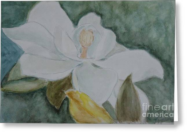 Longue Vue Magnolia 3 Greeting Card by Katie Spicuzza