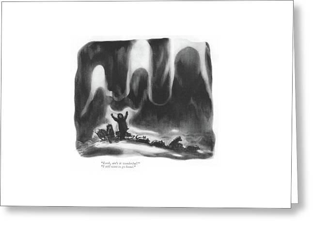 Look, Ain't It Wonderful! I Still Want To Go Home Greeting Card by Richard Decker